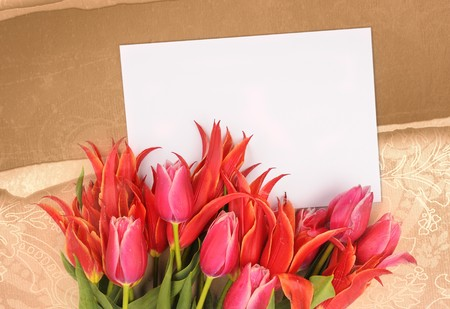 beautiful flowers with congratulatory blank on decorative background Stock Photo - 7546000