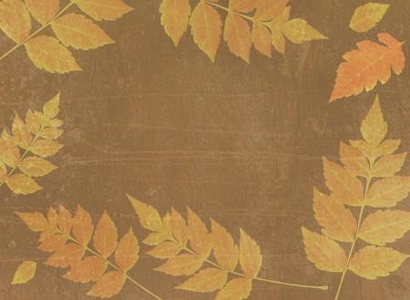 vintage autumn background Stock Photo - 7856072