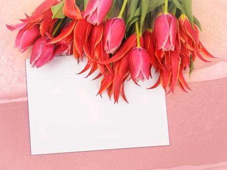 beautiful flowers with congratulatory blank on decorative background Stock Photo - 9059524