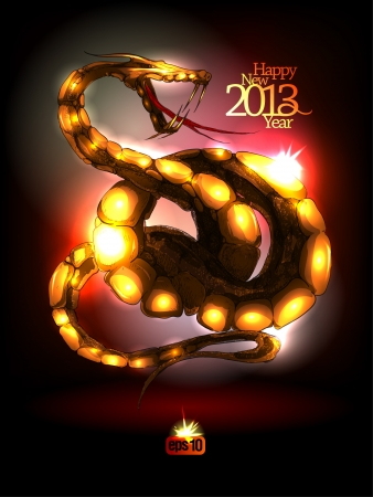 New Year 2013 design.illustration. Vector