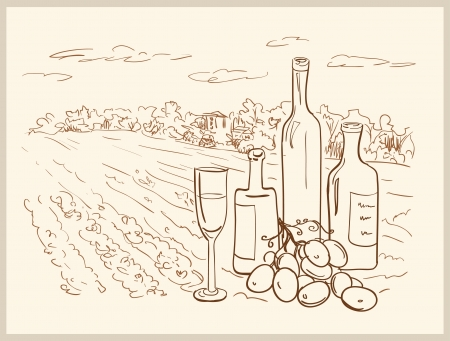 Hand drawn vineyard with bottles of wine  Stock Vector - 17198764