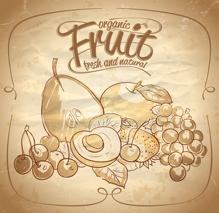 Organic fruit hand drawn illustration with text. Eps10 Vector
