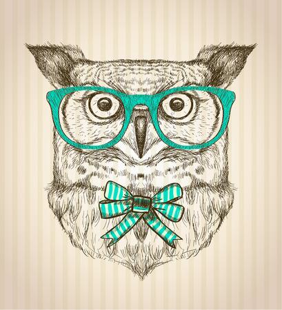 sowa: Cute karty z ręcznie rysowane sowy hipster ubrana w zielone okulary i dziobu.