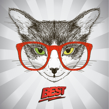 best background: Graphic poster with hipster cat dressed in red glasses, against pop-art background with rays, quote card Best, hand drawn vector illustration