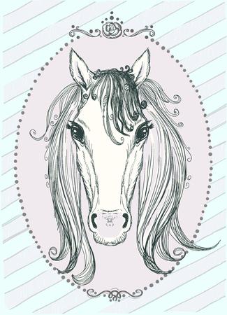 front view: Cute horse portrait graphic illustration, front view, vintage style frame