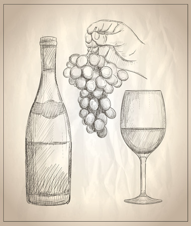 Hand drawn graphic illustration of a man hand holding bunch of grapes, glass of wine and a bottle of wine