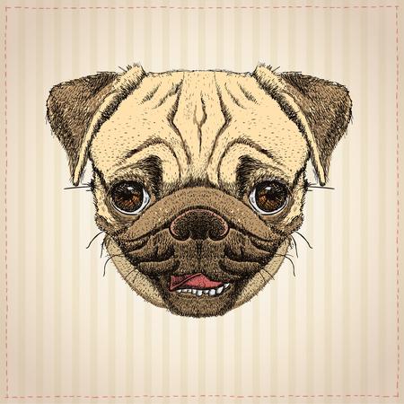 Retrato gráfico de perro Pug, Ilustración de vector dibujado a mano con lindo perro pug