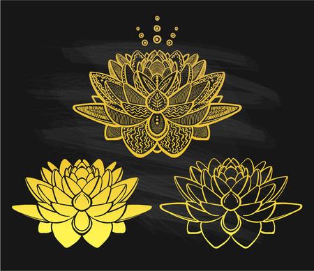 Golden lotus flowers on a chalkboard, vector illustration
