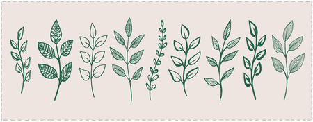 Branches and leaves symbols set, hand drawn vector illustration