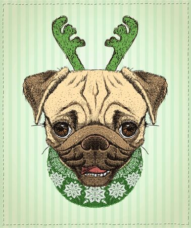 Pug dog christmas portrait, hand drawn illustration with cute pug dog dressed in christmas clothing