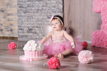 Cute smiling baby girl in pink dress with her first birthday cake Фото со стока
