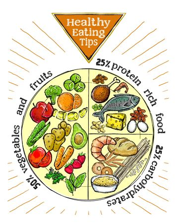 Healthy eating tips plate, proper nutrition proportions, hand drawn vector illustration