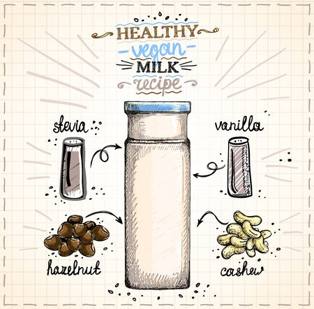 Healthy vegan nut milk recipe illustration, raw cashew and hazelnut milk in bottle with ingredients, hand drawn graphic sketch