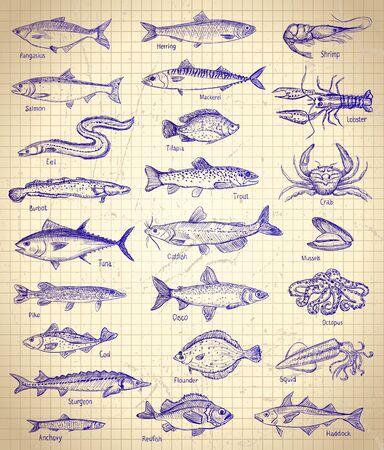 Illustration graphique de poisson et de fruits de mer sur un papier Vecteurs