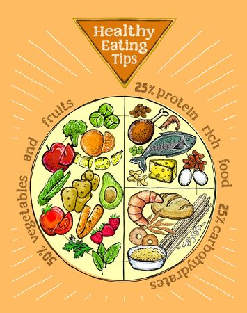 Healthy eating tips plate, proper nutrition proportions, hand drawn graphic vector illustration