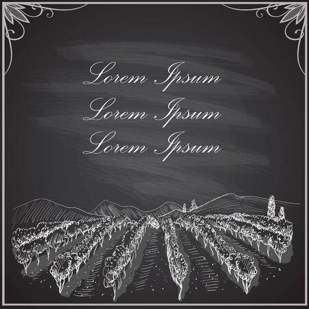 Vineyard landscape on a chalkboard, vector graphic illustration, copy space for text Vektoros illusztráció