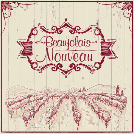 Young wine holiday - Beaujolais nouveau vector banner design concept with hand drawn vineyard landscape, vintage style