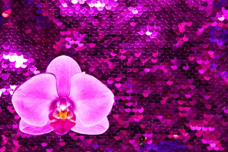 Pink orchid on bright ultraviolet glance background made of two-sided sequins. Holiday concept.