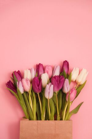 Bouquet of tulips in craft paper bag on pink background. Holiday concept. Greeting for Womens or Mothers Day, Valentines day