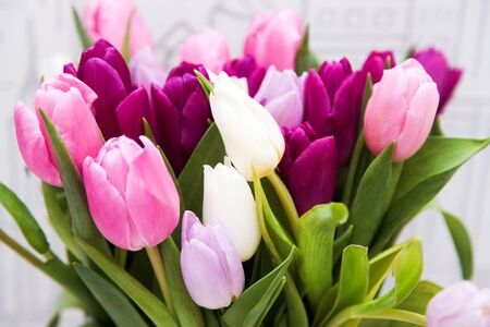 Beautiful bouquet of colorful tulips. Holiday concept.