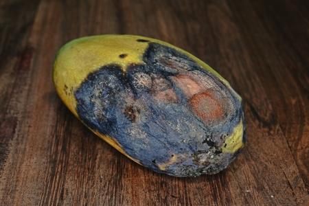 mango fruit disease caused by fungi Stock Photo