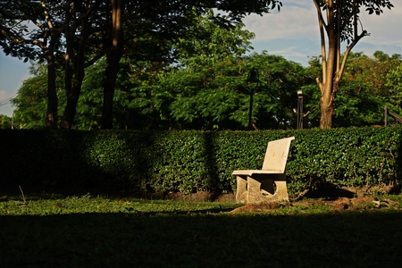 bench in the garden,relax 写真素材