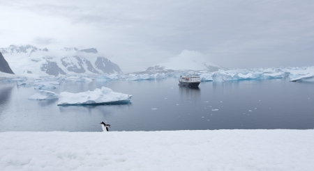 expeditions: Antarctic Landscape with ship in harbor
