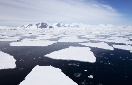 Antarctic Landscape - Blocked by Icebergs