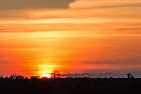 sunset: Puesta del sol africana magnífica en Parque Nacional Kruger