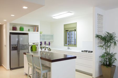improvement:  White  luxury kitchen in a  new modern home