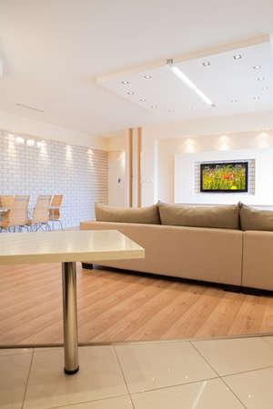 Modern room with plasma tv Stock Photo - 8311726