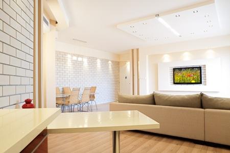 Modern room with plasma tv Stock Photo - 8311716