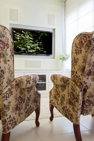 reviewer: Modern room with plasma tv   Note to reviewer: Original picture in the TV Screen  was replaced by one of my images.