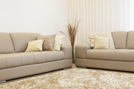 Part Of Luxury Modern Living Room Stock Photo - 19755488