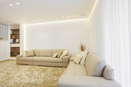 Part Of Luxury Modern Living Room photo