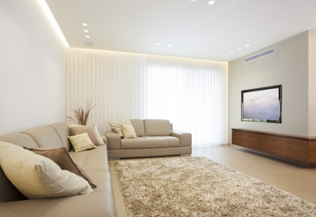 Luxury Modern Living Room Stock Photo - 19755485