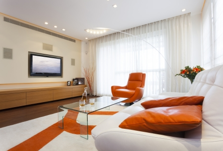 Luxury Modern Living Room Stock Photo - 19761683