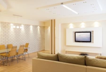 Modern room with plasma tv Stock Photo - 19761684