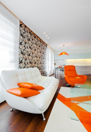 Luxus Modern Living Room Standard-Bild