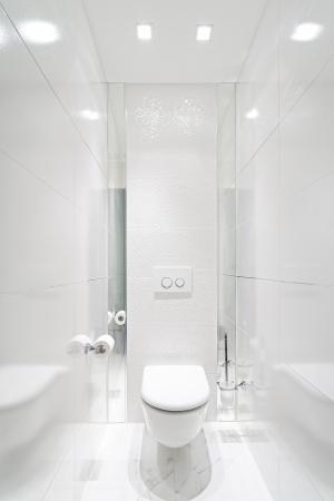Toilet in home - White Colour Stock Photo - 24691560
