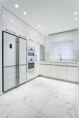Modern Luxury White  kitchen photo