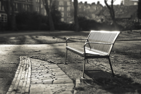 nature photography: Bench in autumn park  - London, England Sepia color Shallow Focus Stock Photo