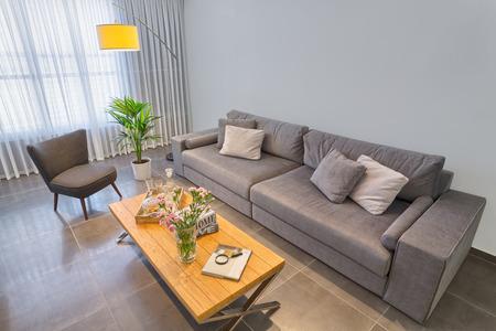 luxury living room: Luxury Modern Living Room