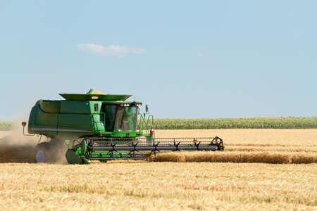 A farmer in a combine harvesting wheat  Zdjęcie Seryjne