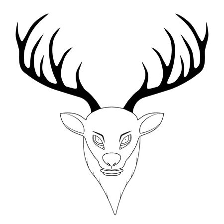 Vector illustration of a deer head with antlers. Vector