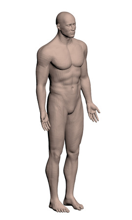 nude male body: Vector illustration of a realistic man. Polygon. 3D.