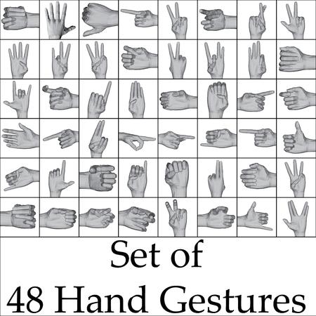 제스처: Vector illustration set of hand gestures.