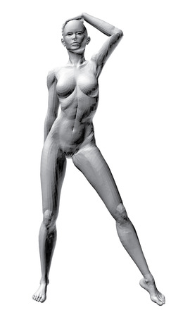 nude girl: Vector illustration of sexy nude girl.