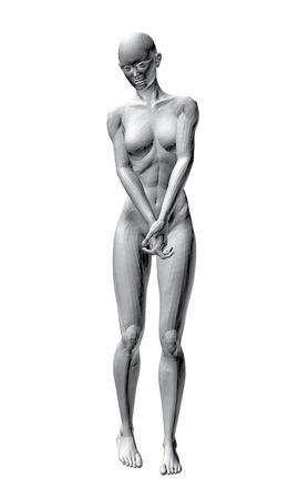 girl sexy nude: Ilustraci�n vectorial de la sexy chica desnuda.