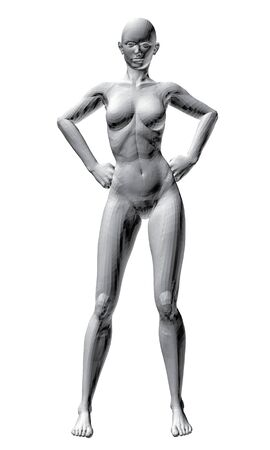 girl sexy nude: Ilustraci�n vectorial de la sexy chica desnuda. 3D.